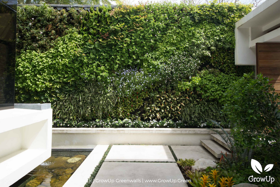 A greenwall in an outdoor space