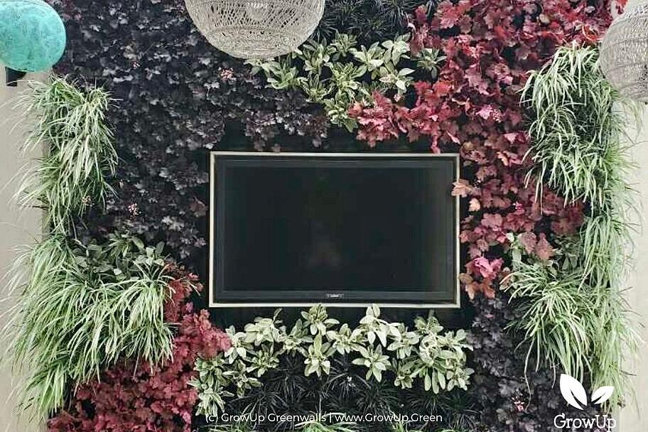 Living wall with TV