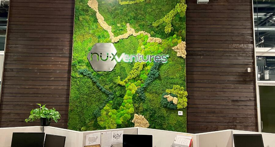 a moss wall in an office setting