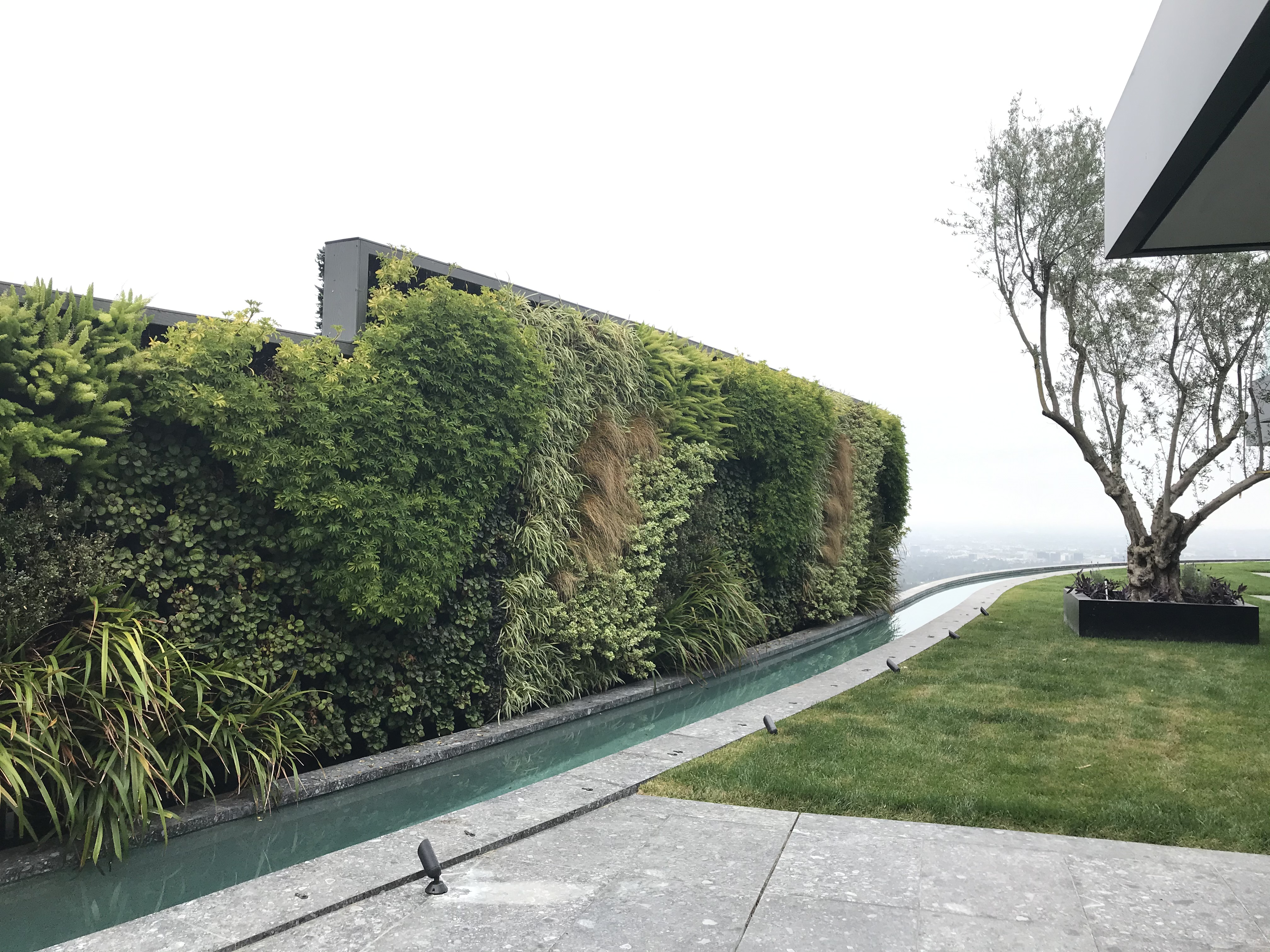 Greenwall After Installation