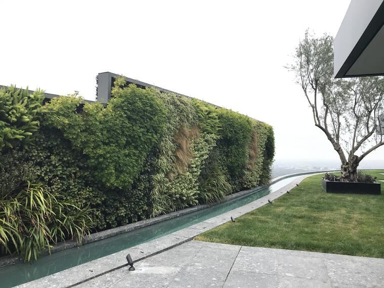 A large outdoor greenwall