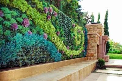 Decora Interi : Suculentas no Jardim