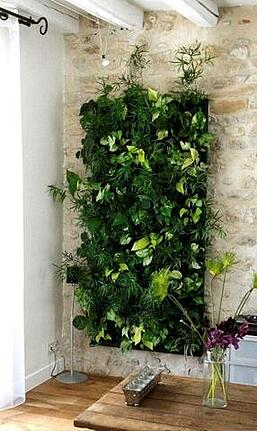 Growup vertical farming | decorative indoor green wall