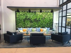 How does Biophilic Design Work, and Where Can Greenwalls Help?