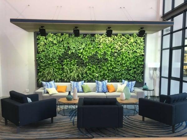office vertical garden advantages