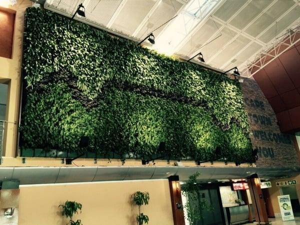 vertical garden maximize space office