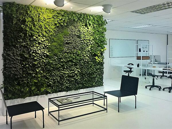 vertical garden noise reduction office