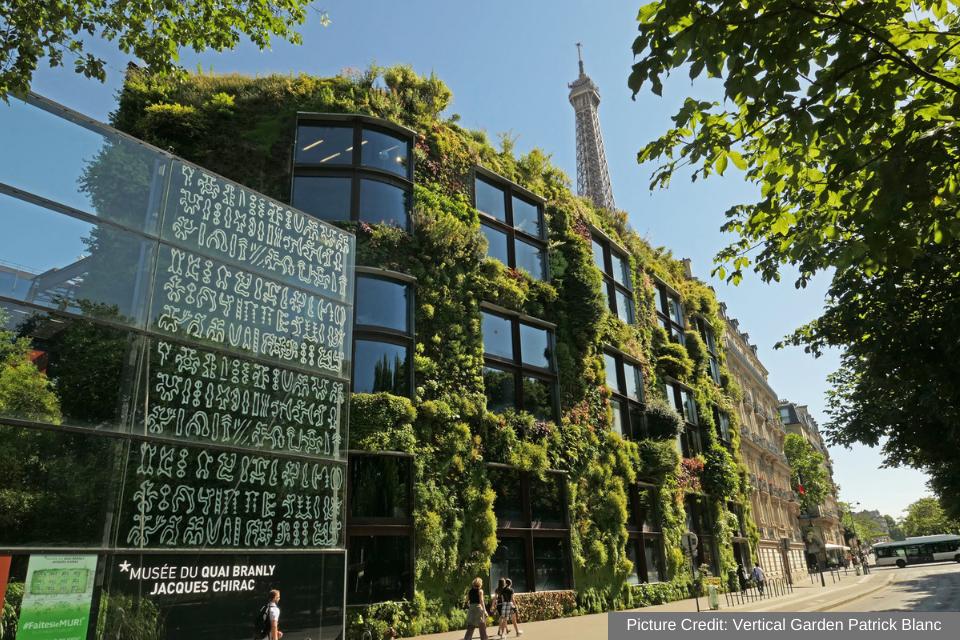 Musee Du Quai Branly - Paris 1