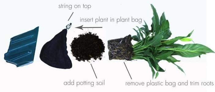 GrowUp Greenwalls potting system