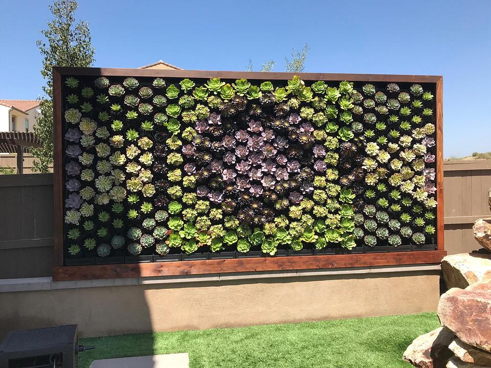 Succulent Wall-2