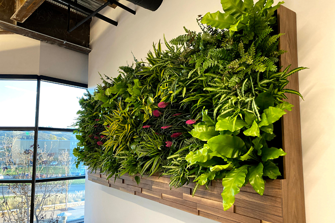 Greenwall in an office
