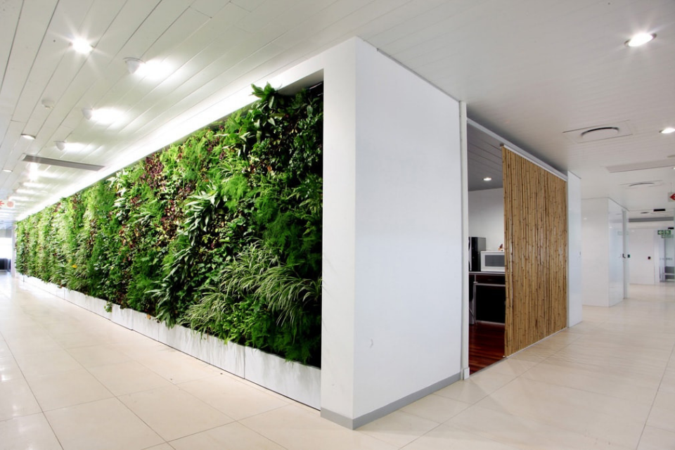 Incorporate green walls into your business model