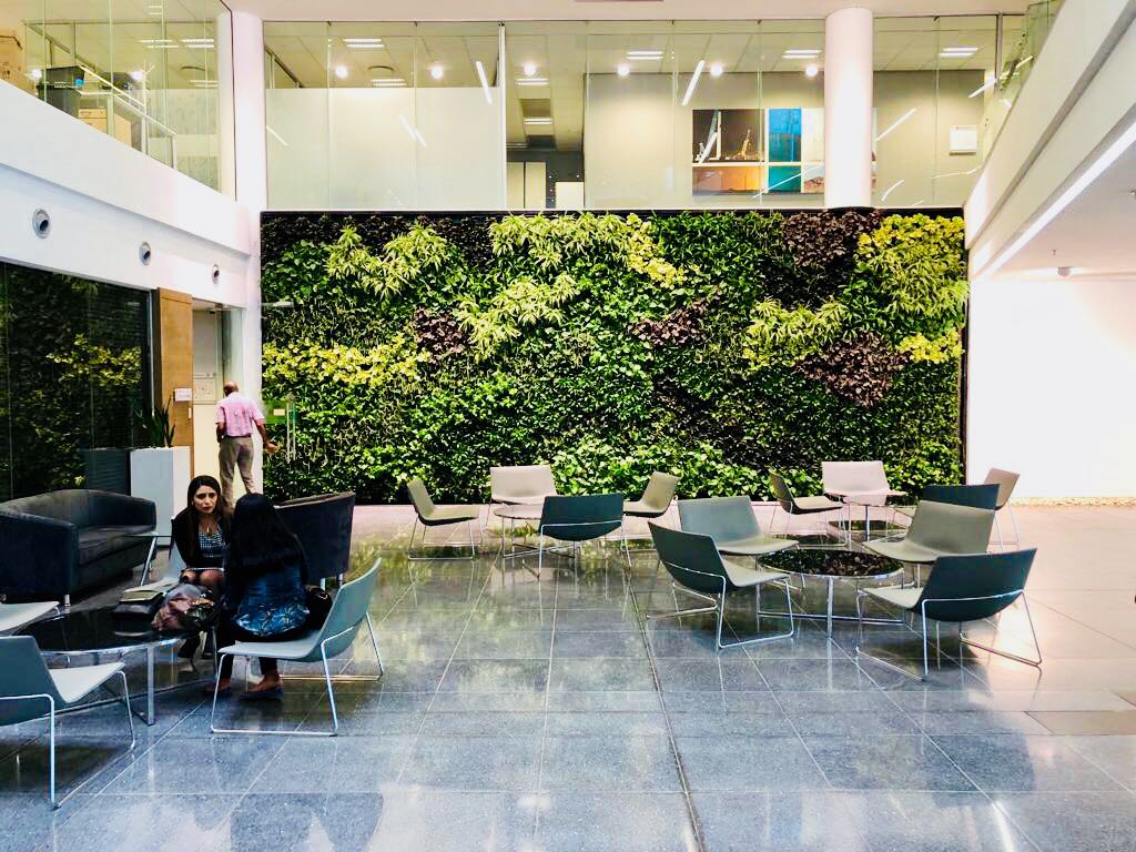 living green walls in corporate spaces