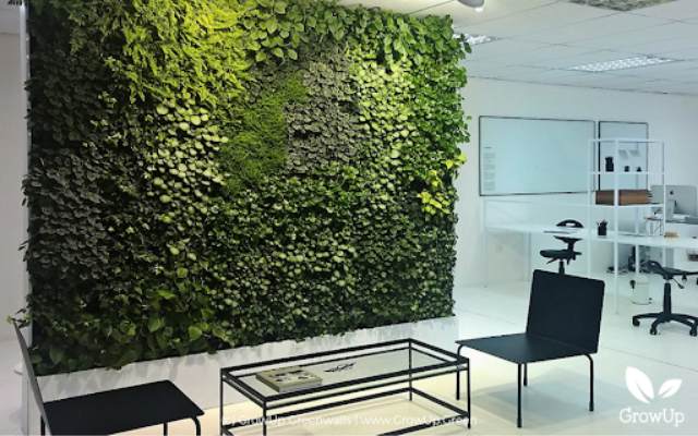 How to Choose Your Greenwall Lighting