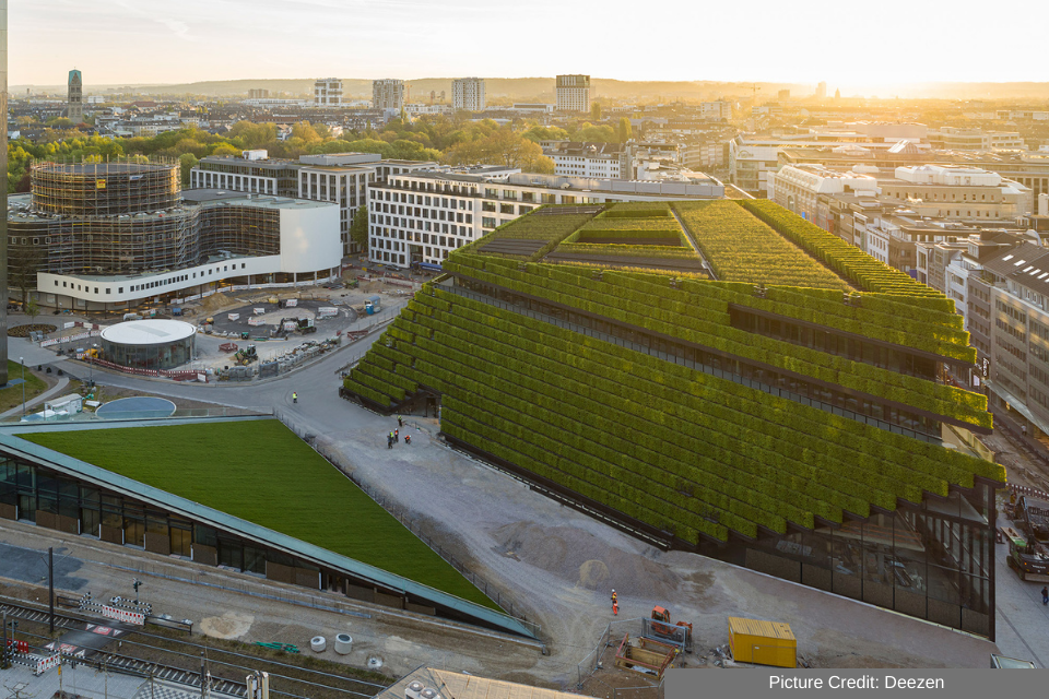 The Top 7 Living Walls In Our World