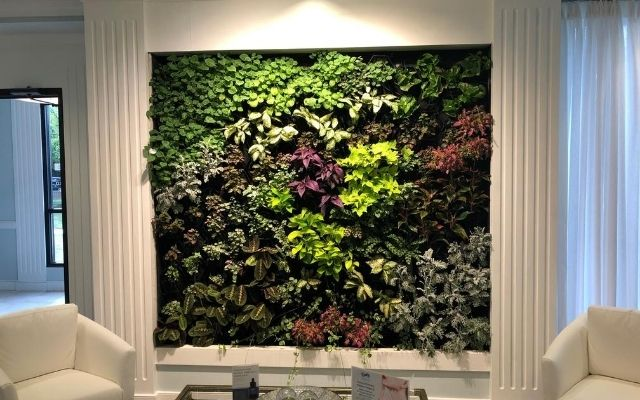 Beautiful indoor living wall