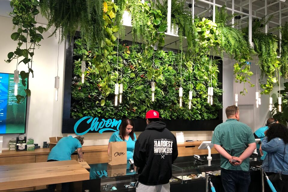 a greenwall install by New Earth Solutions
