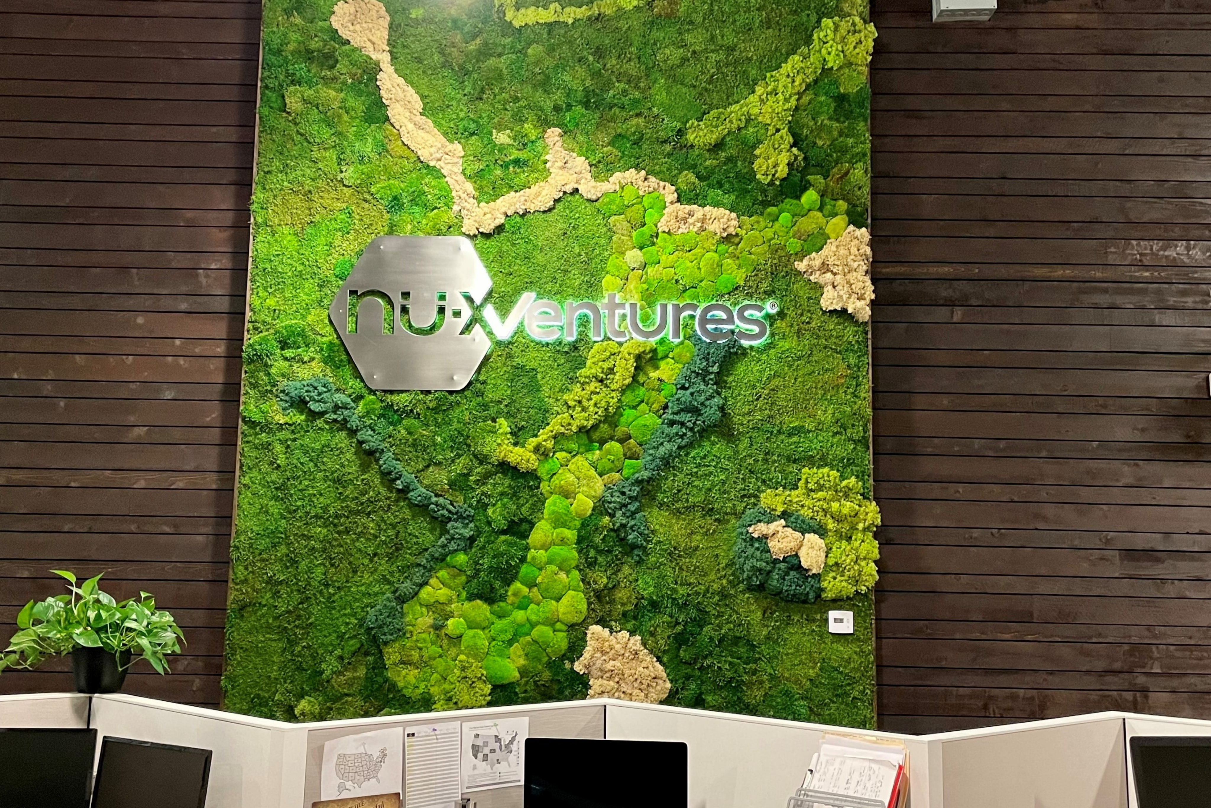 A moss wall in an office space